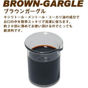 業務用洗口液 ブラウンガーグル 5L 2本セット